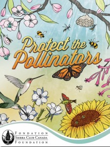 What's happening with pollinators and plants in April 2015