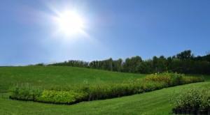 farm-edited sky